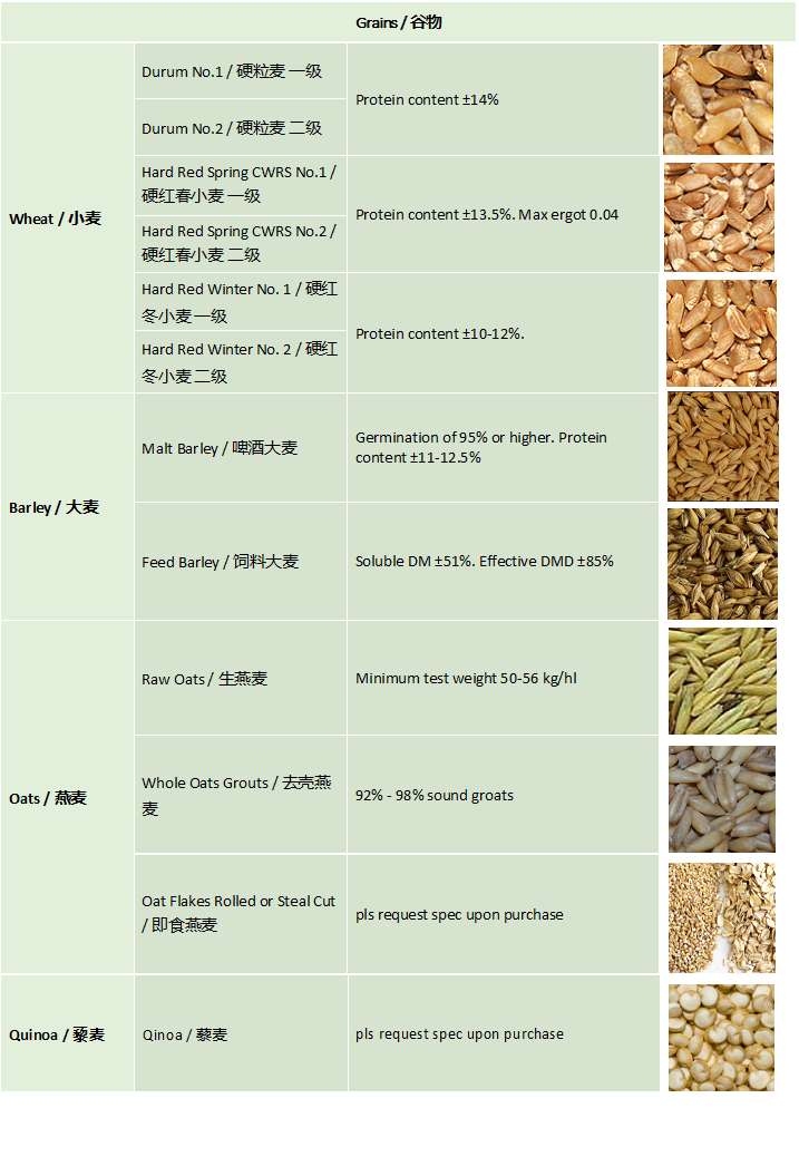 Grain_Agri-commodities
