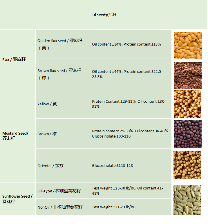 Oilseeds_Agri-commodities